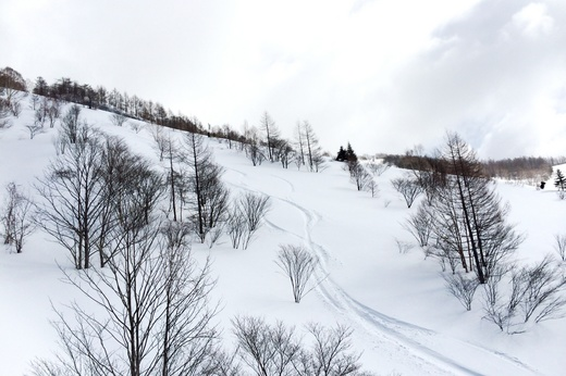 Kawaba Ski Resort_12|2014.3.22_2.jpg